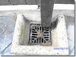 Information About Drain Pipes Amp Drainage Systems